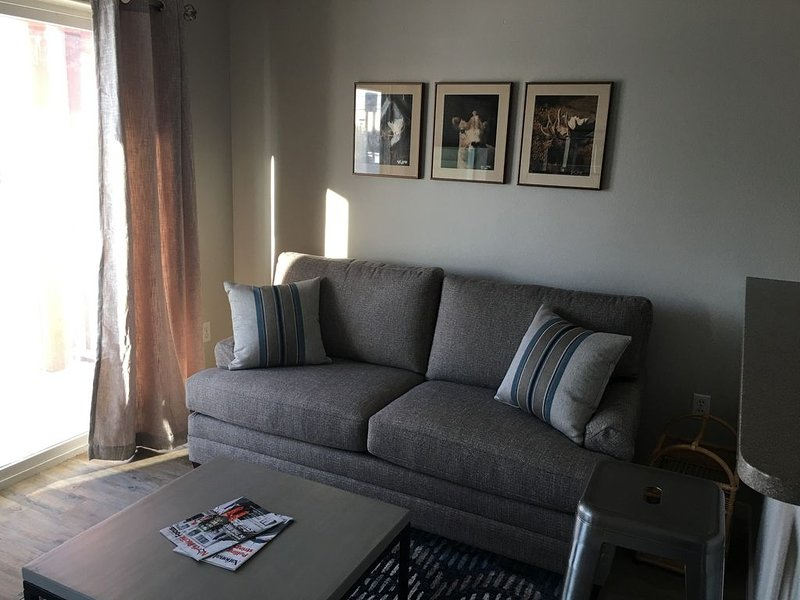 Newly Renovated In-Town Apartment - Close to everything!, location de vacances à Fairbanks