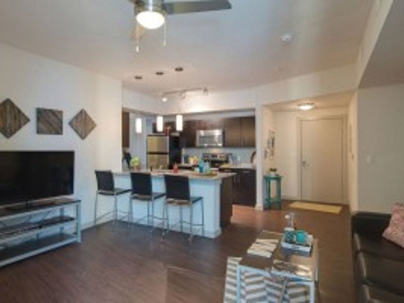 Modern 2B 2B Within Walking Distance to UH and 10min to Downtown Houston, holiday rental in Pasadena