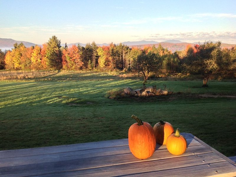 Windy Meadow Farm, 125 acres of stunning views, child and dog friendly, vacation rental in Craftsbury