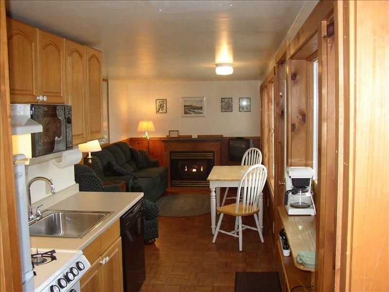 De op het zuidwesten gerichte woonruimte en keuken in het koetshuis