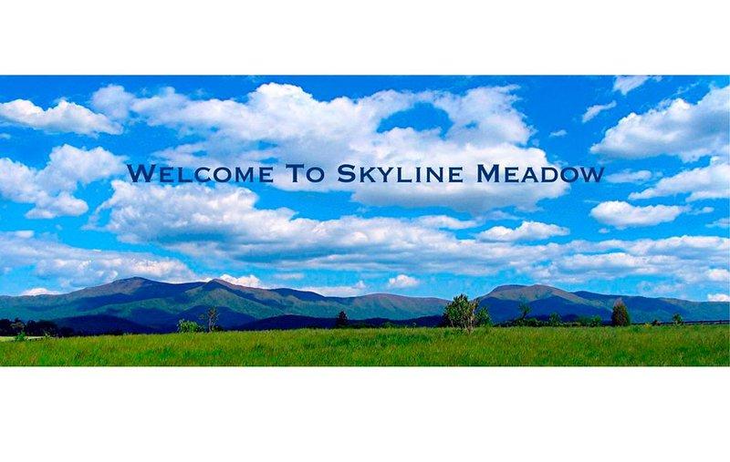 Esta es la vista desde Skyline Meadow!