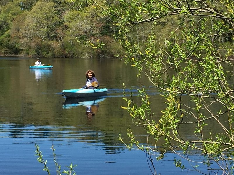 Rabbit Pond is just 2 minutes walk and a great place to take the kayaks!
