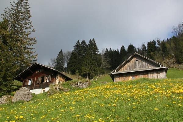 Berghaus Alp