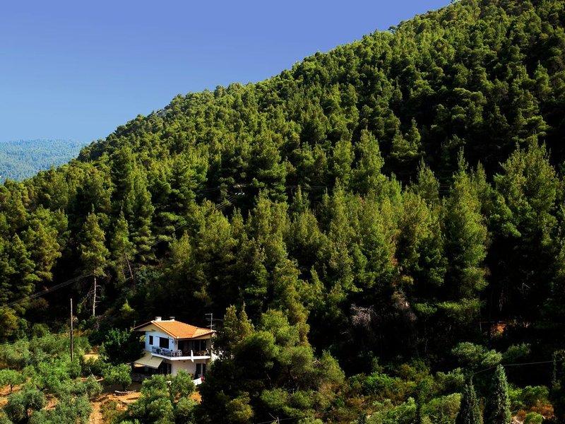 Idyllisch gelegene Ferienwohnung am Meer, Wifi, Vourvourou, Chalkidiki, vacation rental in Ormos Panagias