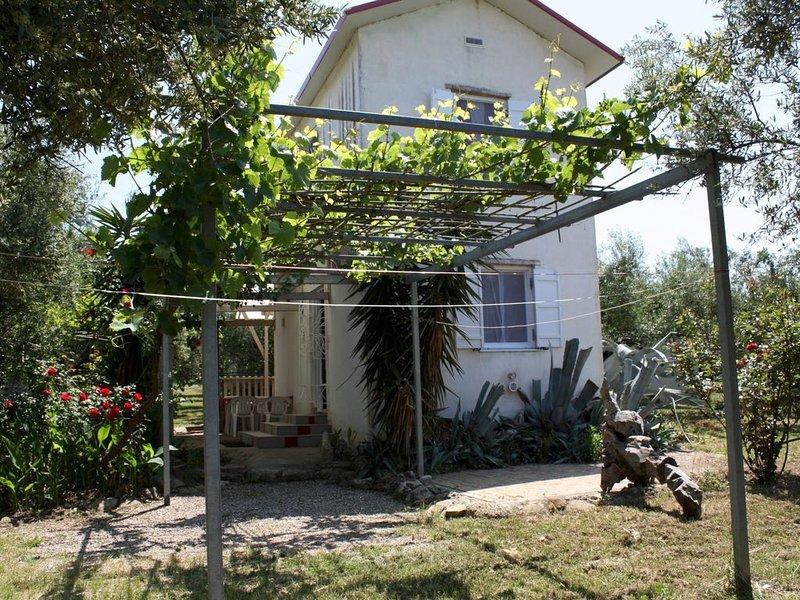 Alleinstehendes Ferienhaus inmitten eines Olivenhains, ruhig und idyllisch geleg, vacation rental in Katakolo