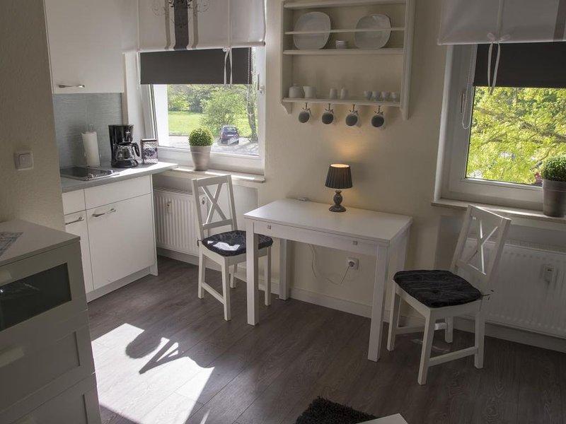 FP 61 - Helles modernes Studio mit chwimmbad und Dachterrasse im Haus für 2 Pers, holiday rental in Nordholz