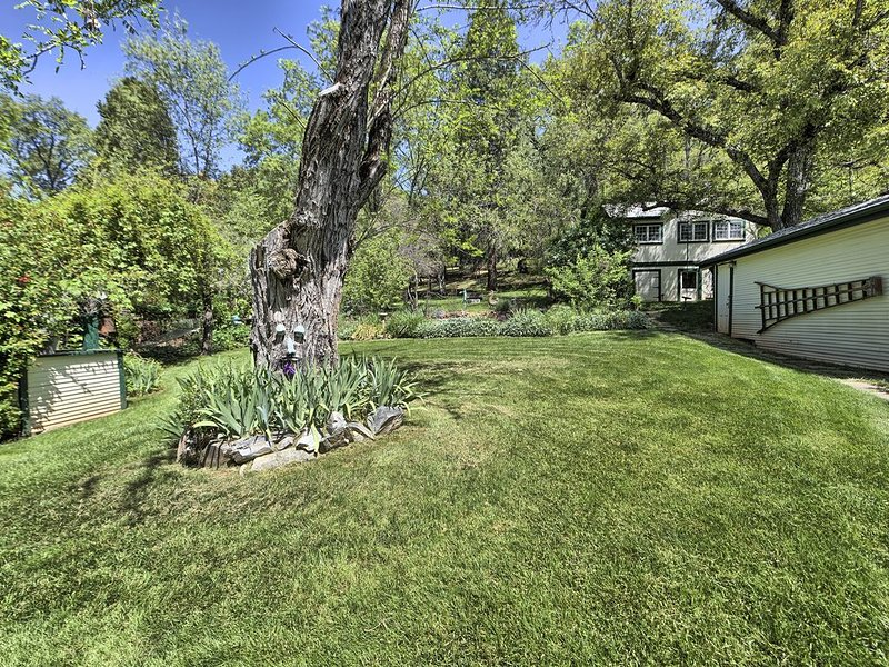 Sits at the back of a sunny, grassy 12K sq ft lot