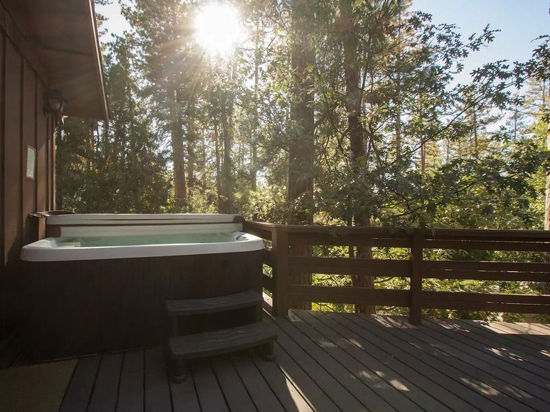 Be Idle Or Be Wild Cabin, holiday rental in Idyllwild