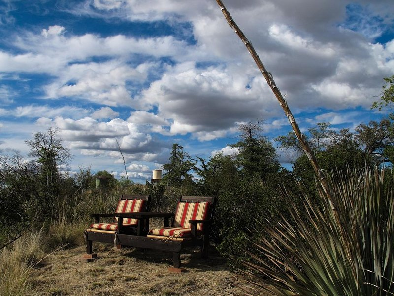 A Secluded Retreat In Nature - La Casita, holiday rental in Oracle