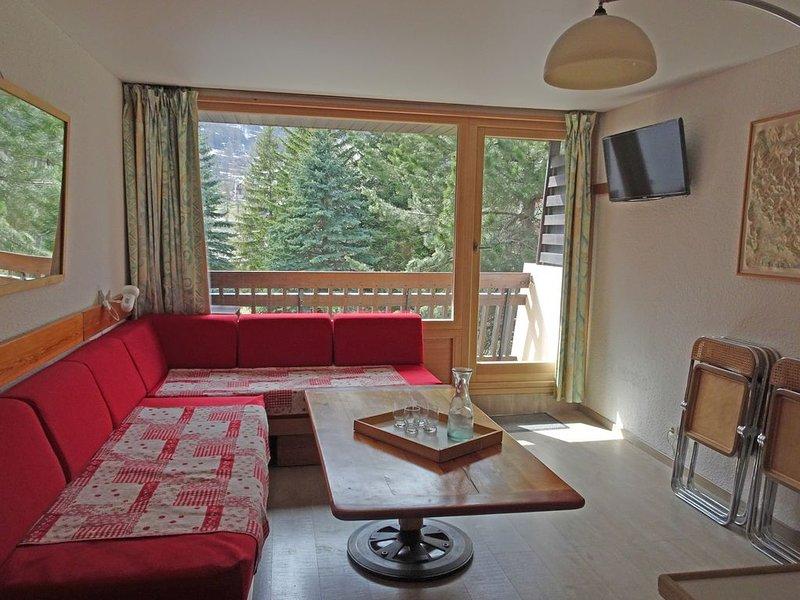 Appartement duplex 50 m2 aux pieds des pistes., holiday rental in La Salle les Alpes