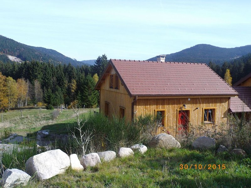 Chalet tout bois au calme animaux bienvenus, holiday rental in Liezey