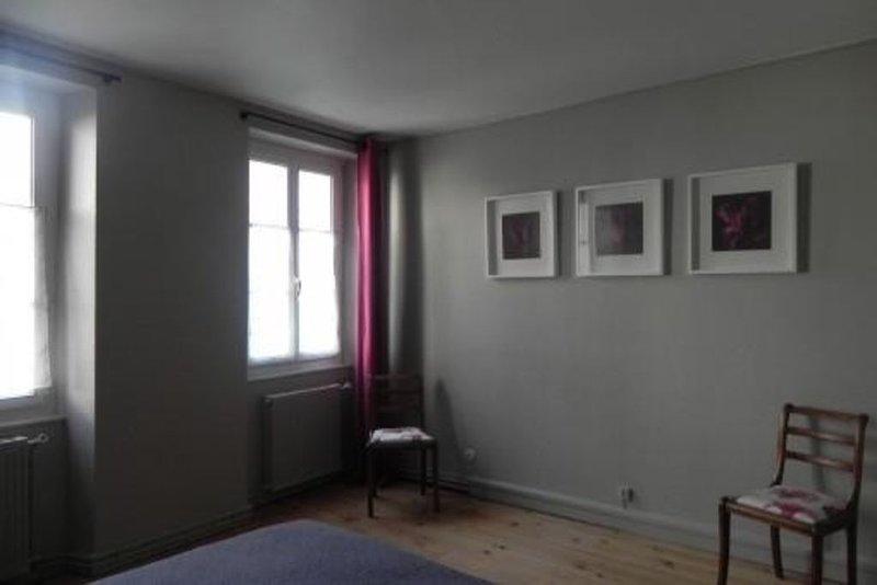 A louer spacieux dupleix centre historique La Rochelle., vacation rental in La Rochelle