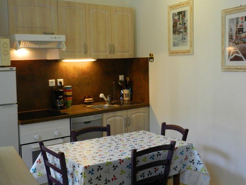 Appartement T2, classé 2 étoiles, WIFI,  pour cures ou vacances au Mont Dore, holiday rental in Le Mont-Dore