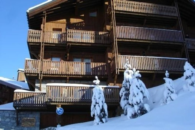 Appartement standing dans chalet sur pistes 3 vallees – semesterbostad i Saint-Martin-de-Belleville