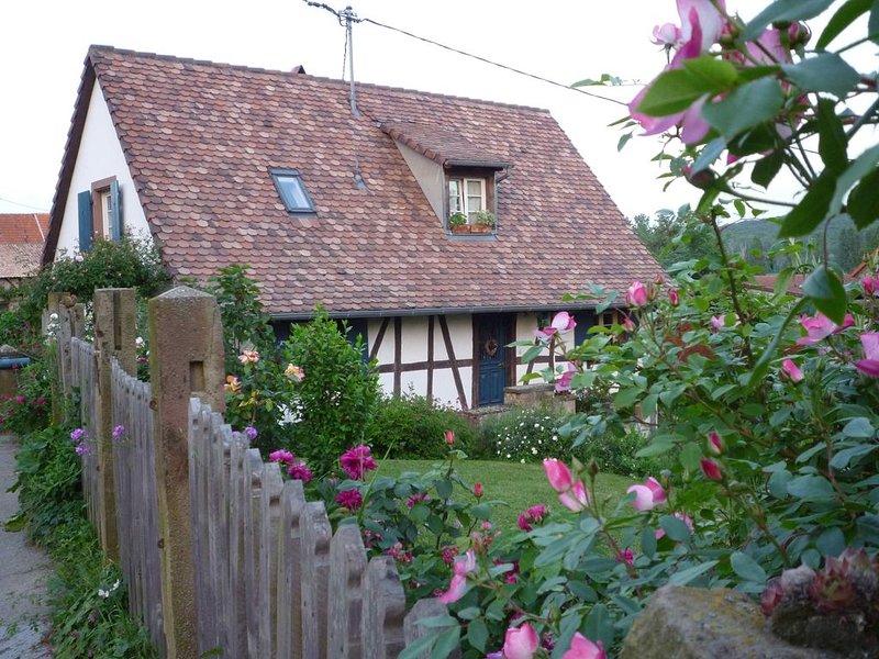 Maison à colombages du 18e siècle dans un beau jardin à l'anglaise  Près Saverne, location de vacances à Willgottheim