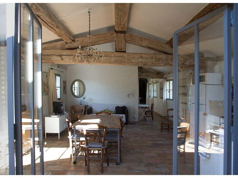 Magnifique appartement rénové  dans hôtel particulier 19ème, holiday rental in Saint-Christol