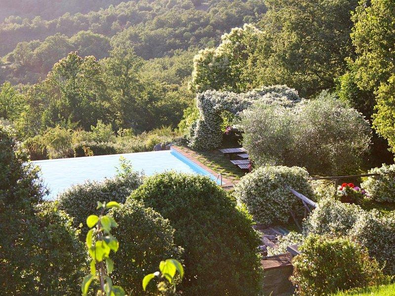 Casella- under the tuscan sun, casa vacanza a Castel Rigone