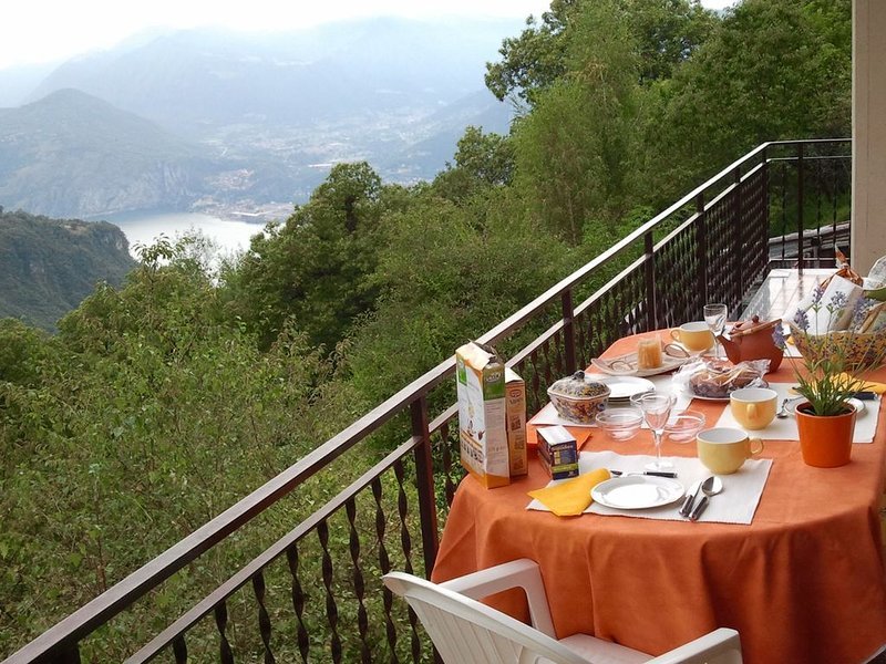 Ampio e comodo appartamento immerso nel verde della montagna e vicino al lago, casa vacanza a Costa Volpino