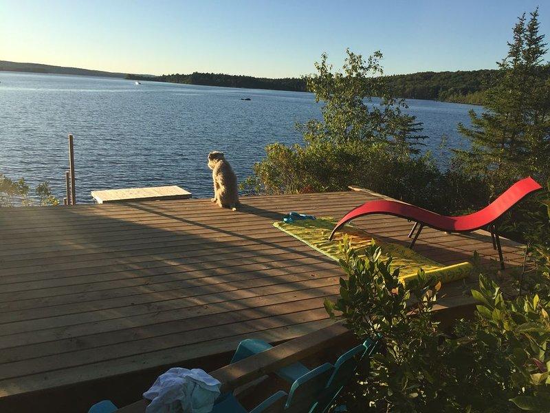 Beautiful private waterfront cottage on Sherbrooke Lake, Nova Scotia, casa vacanza a New Germany