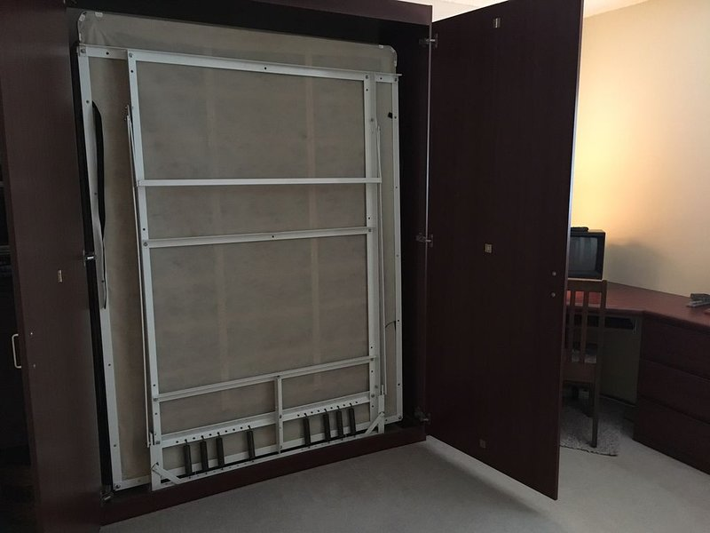 2nd bedroom with fold away full size bed and office space