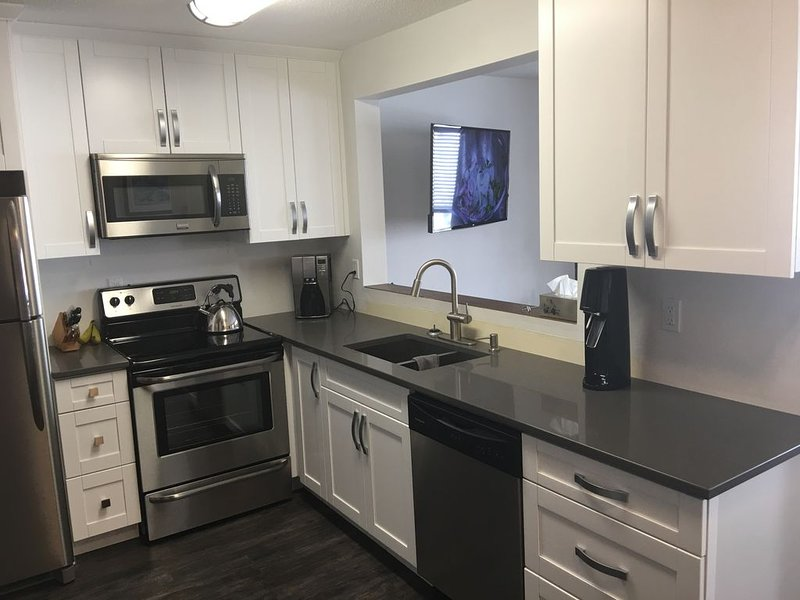 Freshly renovated family condo located in the Village, holiday rental in Big White