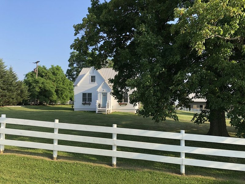 Gorgeous Restored Farm on 10 Acres, holiday rental in Menomonie