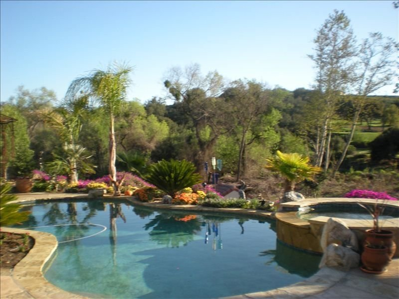 Pool and a portion of the back yard