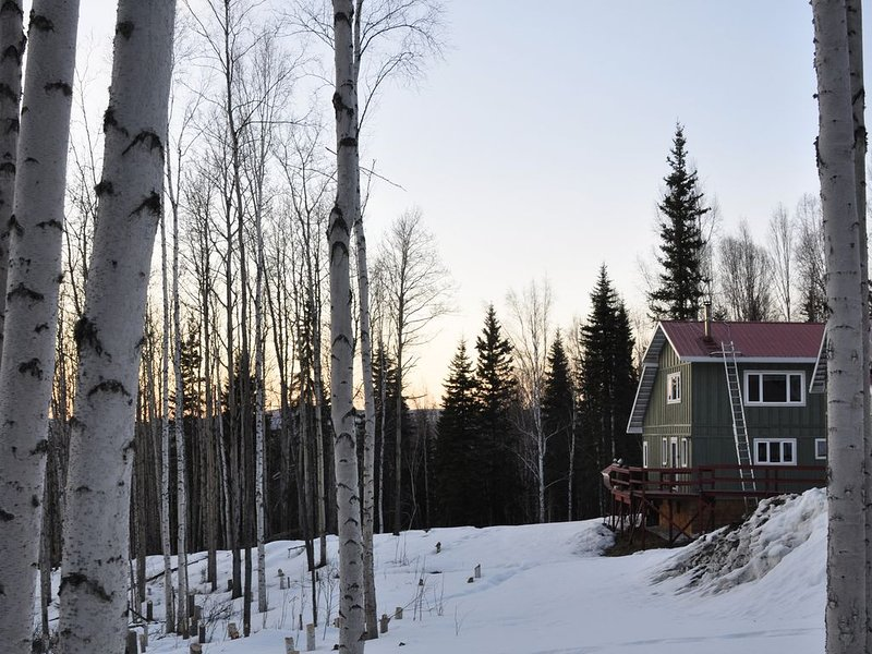 The perfect combination of cabin and house, holiday rental in Fairbanks