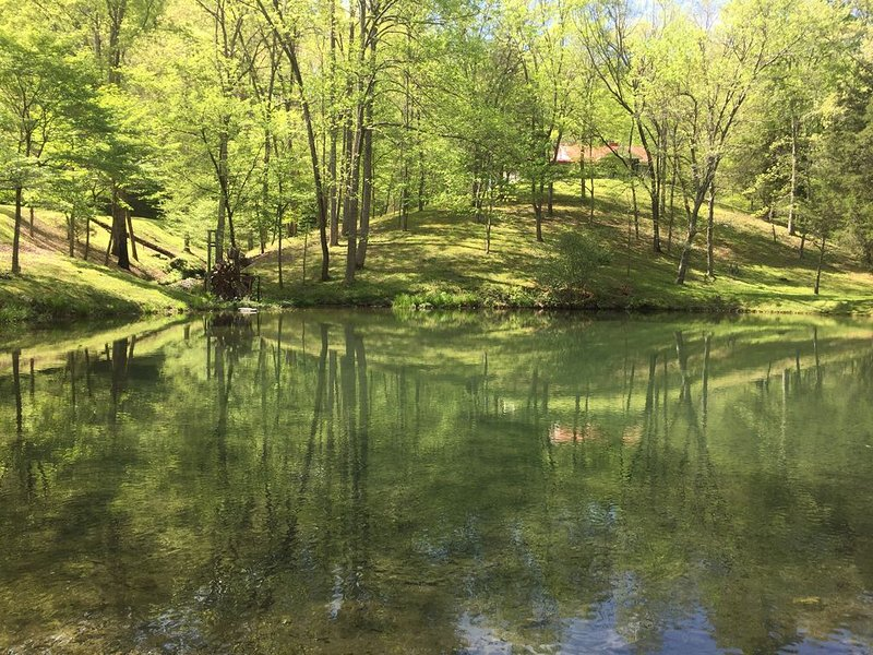 Creekside Home- Secluded in Nature!, location de vacances à Tullahoma