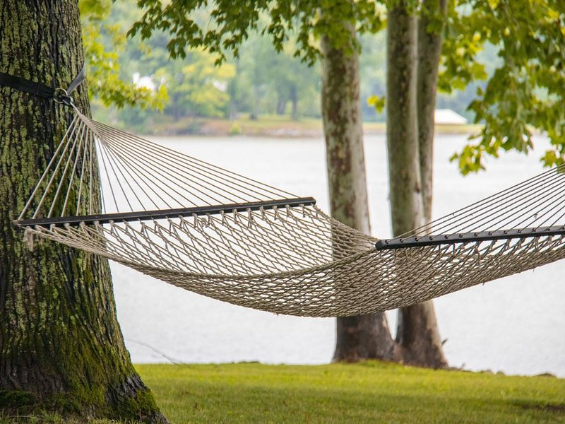 Plenty of Hammocks for your relaxation