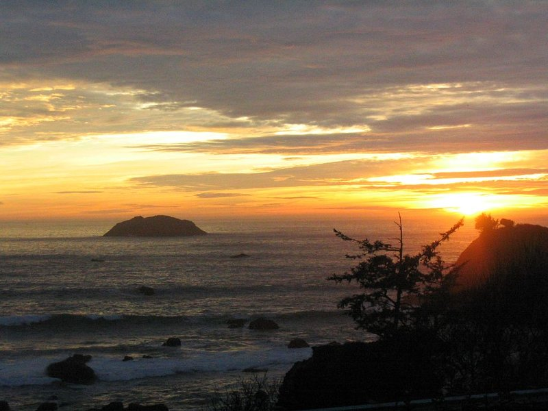 Breathtaking Experience Of The Pacific's Edge - Ocean's Edge Cabin, holiday rental in Hiouchi