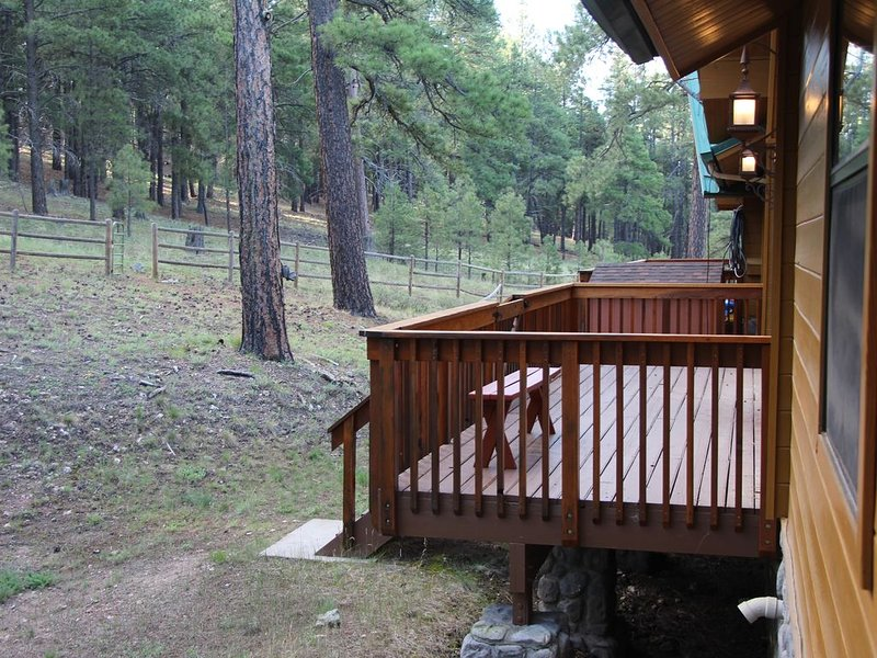 Back deck by northwest family room overlooking National Forest