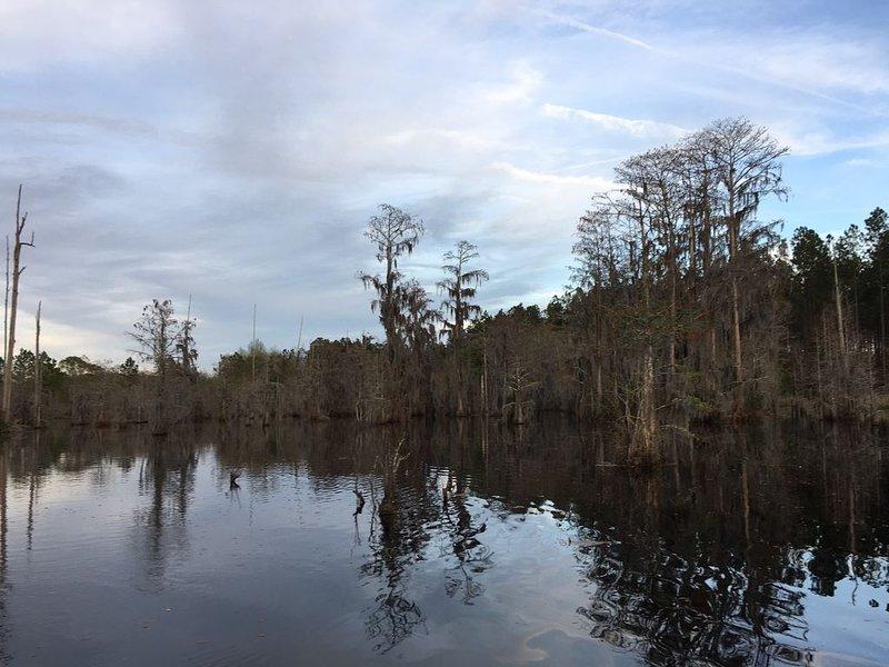 Blackshear Cabin on Lake, holiday rental in Waresboro