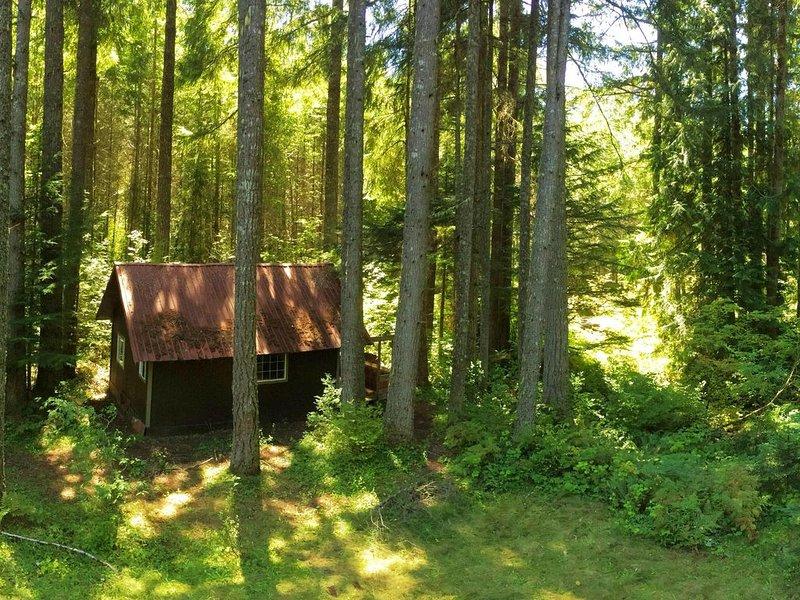 Cozy Rainier Cabin #21, holiday rental in Elbe