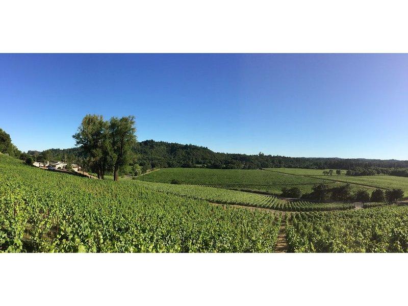 Foreman's Ranch, on the RRV Wine Tasting Route, alquiler de vacaciones en Forestville