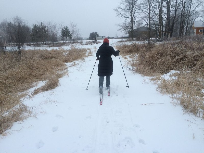 Practique esquí en los senderos que atraviesan el bosque en nuestra granja de 34 acres.