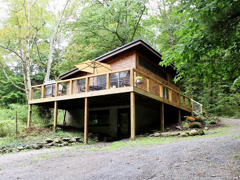 Clean, modern cabin surrounded by nature, location de vacances à Spencer