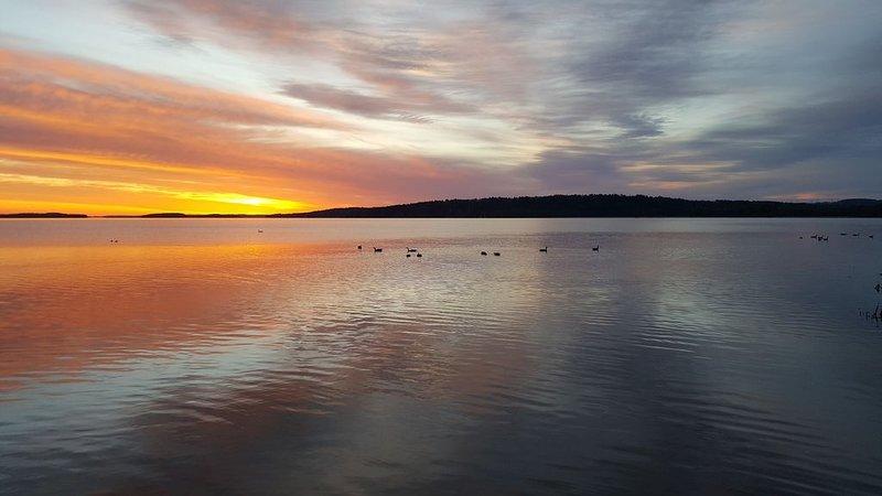 Rice Lake soluppgång från vår privata strandlinje.