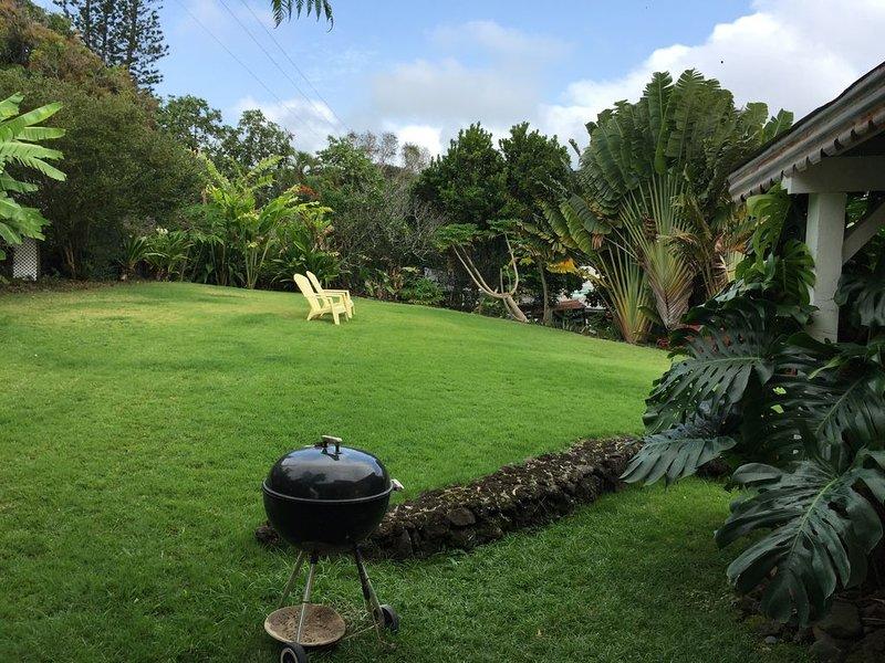 Beaucoup de pelouse douce pour se détendre