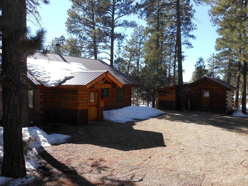 La Plata Mountains Cabins - 2 Cozy Log Cabins In SW Colorado Near Mesa Verde NP, casa vacanza a Mancos