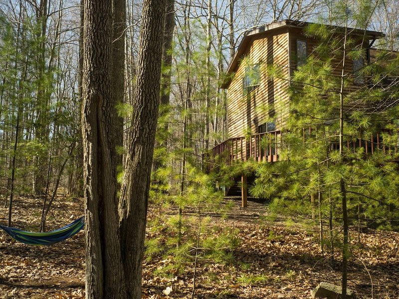 Relaxing House in Catskills Forest Near Pretty Pond - near Woodstock/Phoenicia, alquiler de vacaciones en Shandaken
