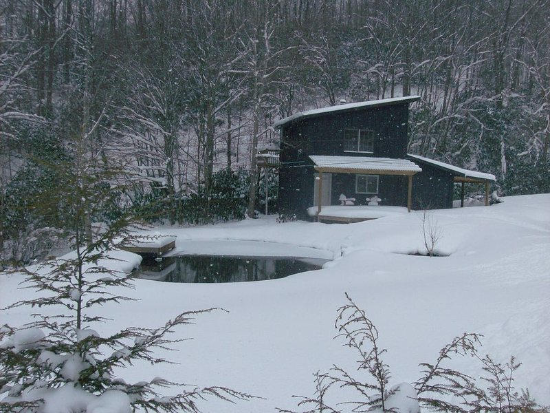 Appalachian Trail Mountain get away within 1/2 mile of the AT and 2 miles Skiing, holiday rental in Flag Pond