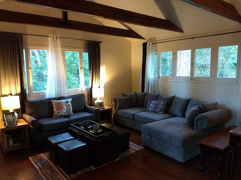 The Alpenglow Cabin - National Forest Adventure Pass, vacation rental in Cedarpines Park