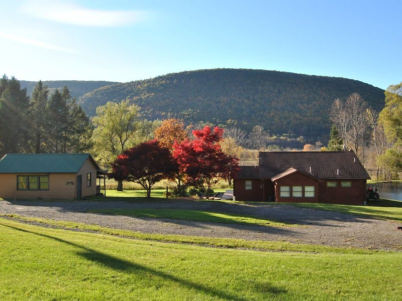 Scenic Fingerlakes Hideaway , Bristol mountain, Letchworth park!, location de vacances à Naples