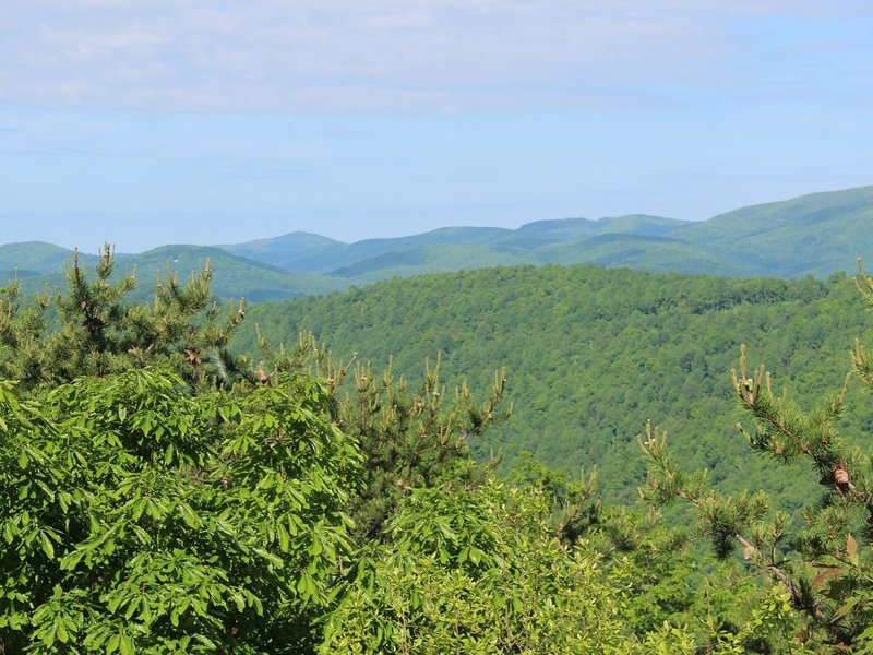 Fabulous Mountain View in 4 Bedroom Retreat at Wintergreen-Winter getaway!!, holiday rental in Montebello