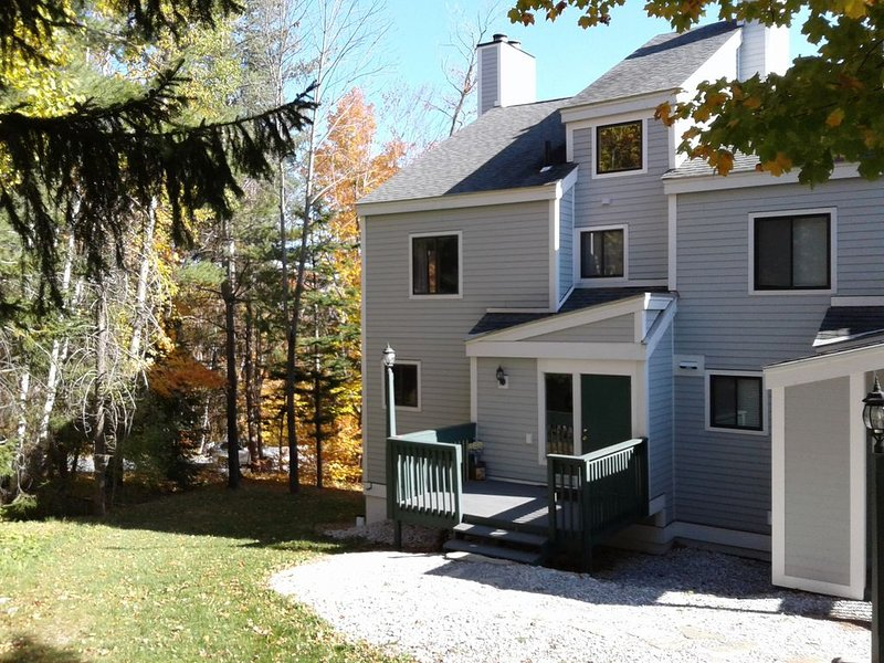 Okemo, MLK & ,2 Story Condo, Walk-On/Off Sachem SkiTrail, Nice View, vacation rental in Mount Holly
