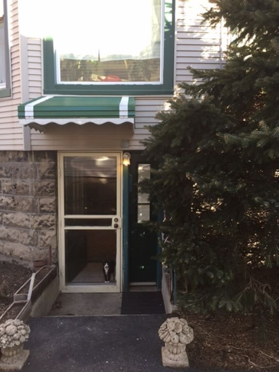 Private entrance! Cat is not included! Her name is Eve!!