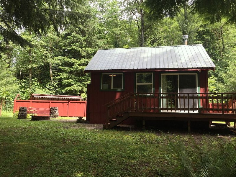 Magic Cabin at the base of Mount Rainier, holiday rental in Elbe