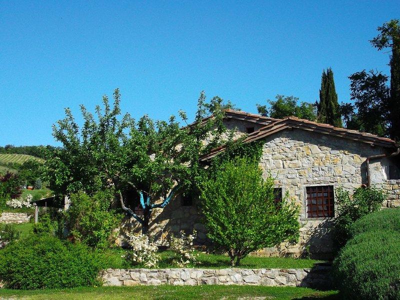 Un chalet enchanteur pour des vacances parfaites, vacation rental in Castellina In Chianti