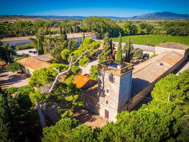 Charmant appartement avec jardin privé dans une chateau viticole avec piscine, alquiler de vacaciones en Aude